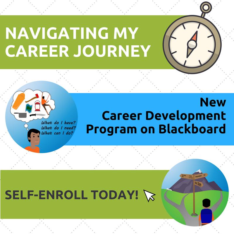 my career journey