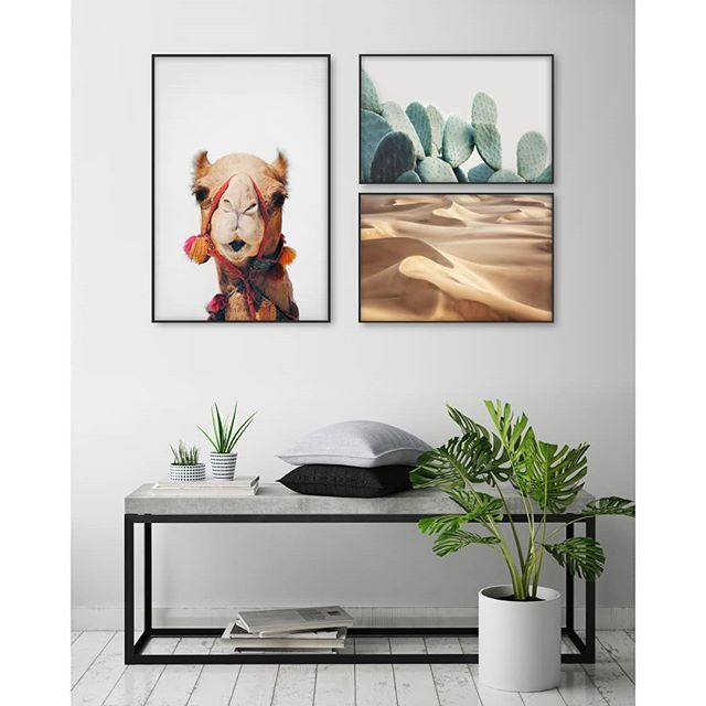 What do you think of this gallery wall inspiration? Desert Life🐪 - Get these designs in the link in the bio. WEISSE WÜSTE by Jan Rudinsky CAMEL by Sisi and Seb PASTEL CACTUS by Sisi and Seb - #artboxone #bespecial https://t.co/1WhUEbicOt