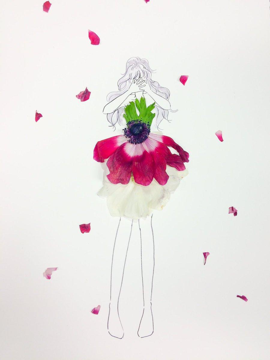 はな言葉 ウェディングドレス 手元に無い花の場合はイラストになってしまうから ごめんなさい きょうの誕生花は 他にアネモネもあるよ 誕生花おめでとう