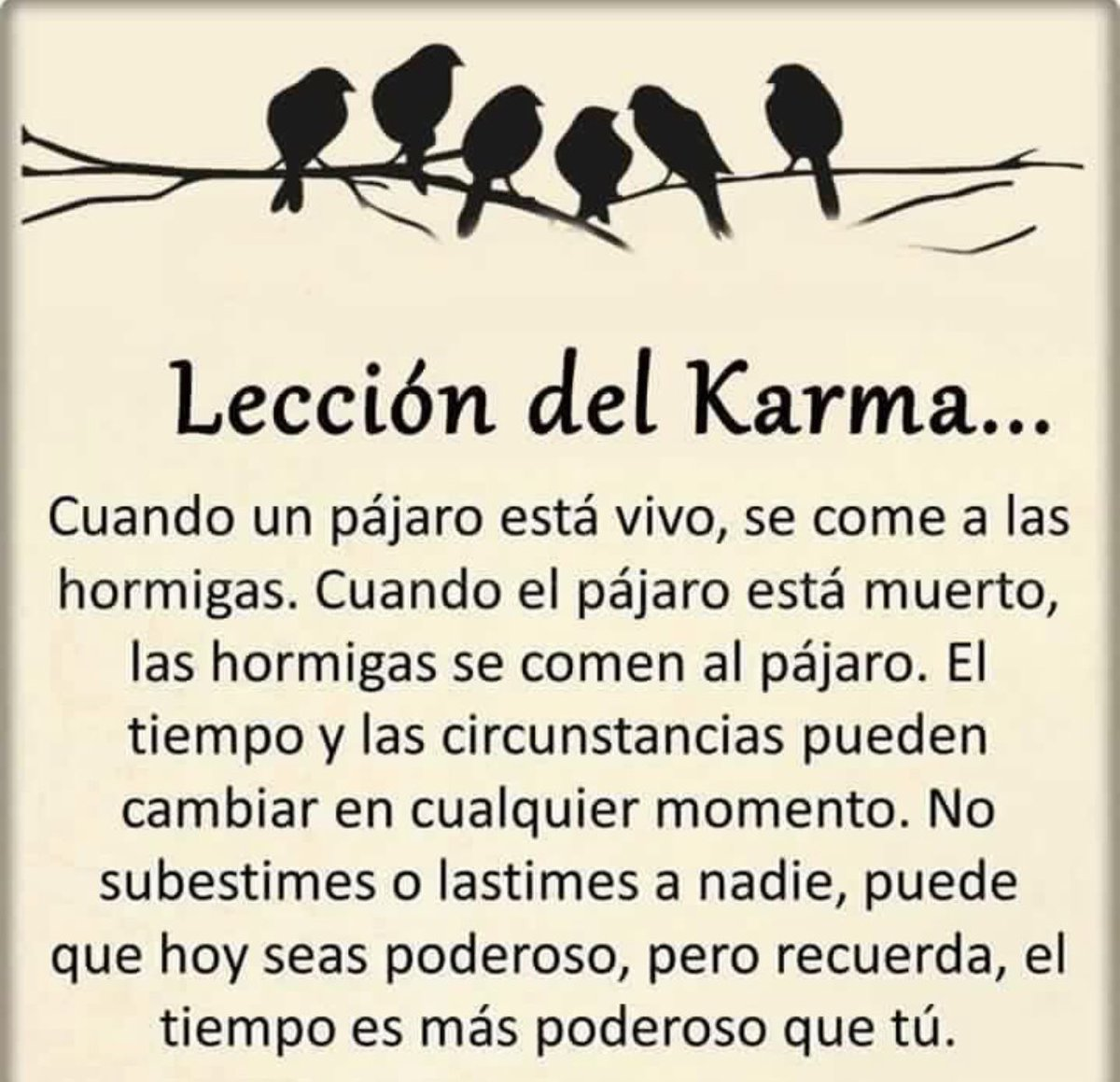Carmen Amalia Acarmenamalia Twitter