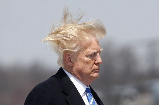 🎶 Dein Haar weht im Wind 🎶 🎶 Von meinem Fenster aus seh' ich Dich geh'n 🎶  #freinach #UdoJürgens #Ichweißwasichwill #Trump
