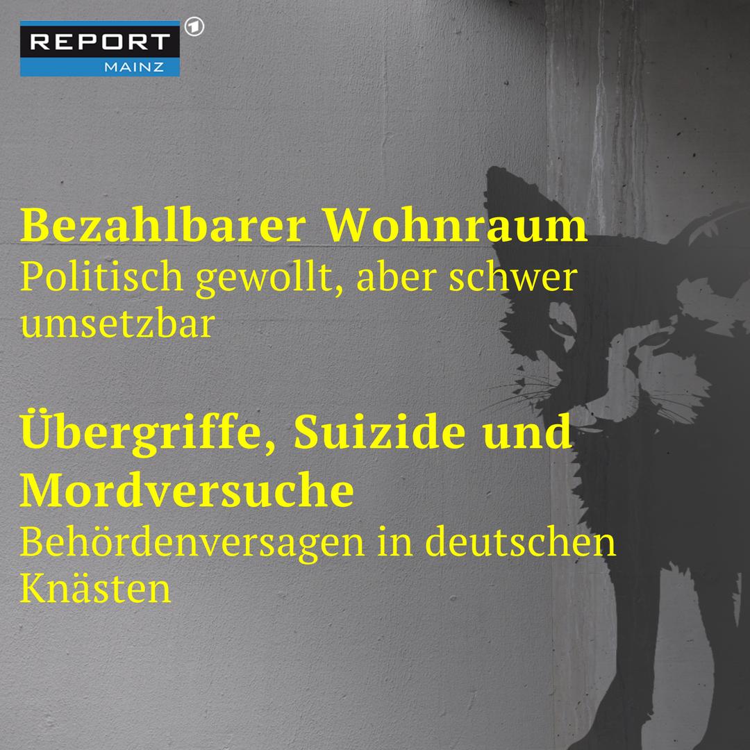 REPORT MAINZ on Twitter: \