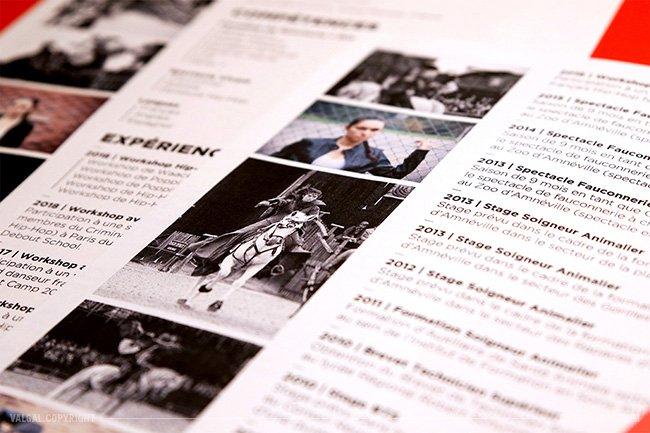 Au Programme Logo Carte De Visite Signature CV Et Book Photo Bim Bam Boum A Va Cogner Svre