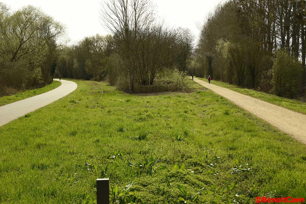 L'avenir de la ligne Caen-Flers - Page 4 DaHte5gXUAA4r_q