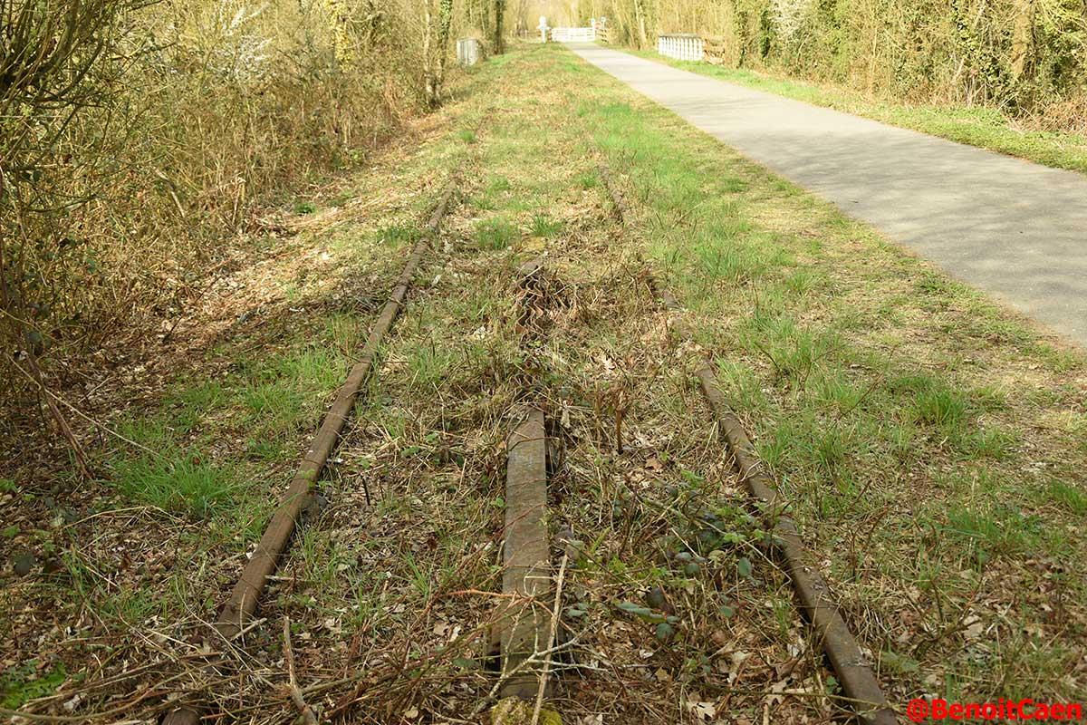 L'avenir de la ligne Caen-Flers - Page 4 DaHu7_8XcAAczIY