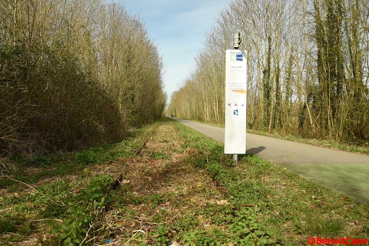 L'avenir de la ligne Caen-Flers - Page 4 DaHxGTZX4AAFDIQ