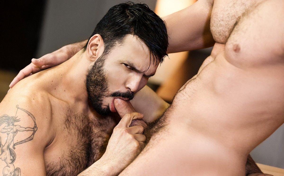 Damien rivkin gay porn