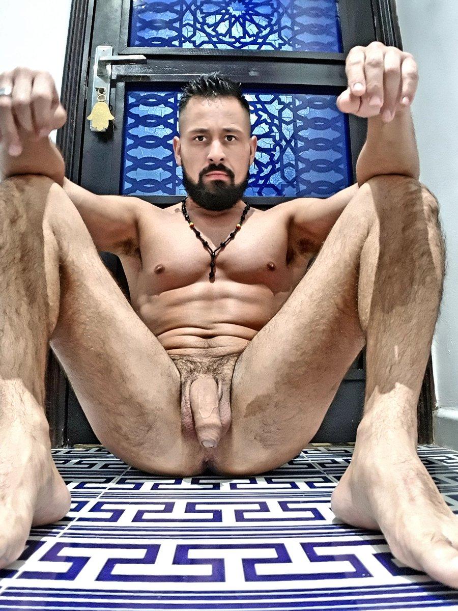 al gay porno
