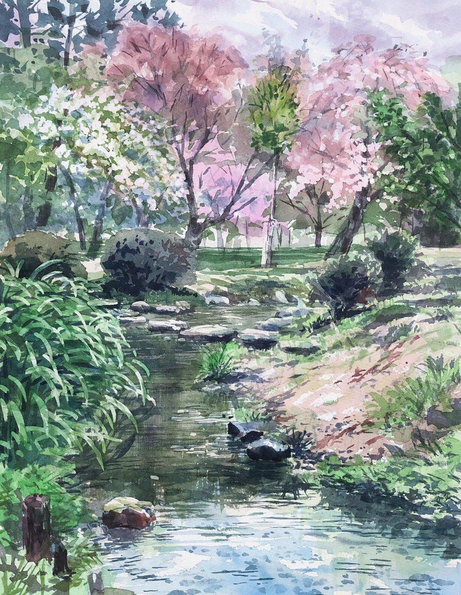 永江弘之 On Twitter 京都御苑の出水の小川をスケッチ桜や若葉が