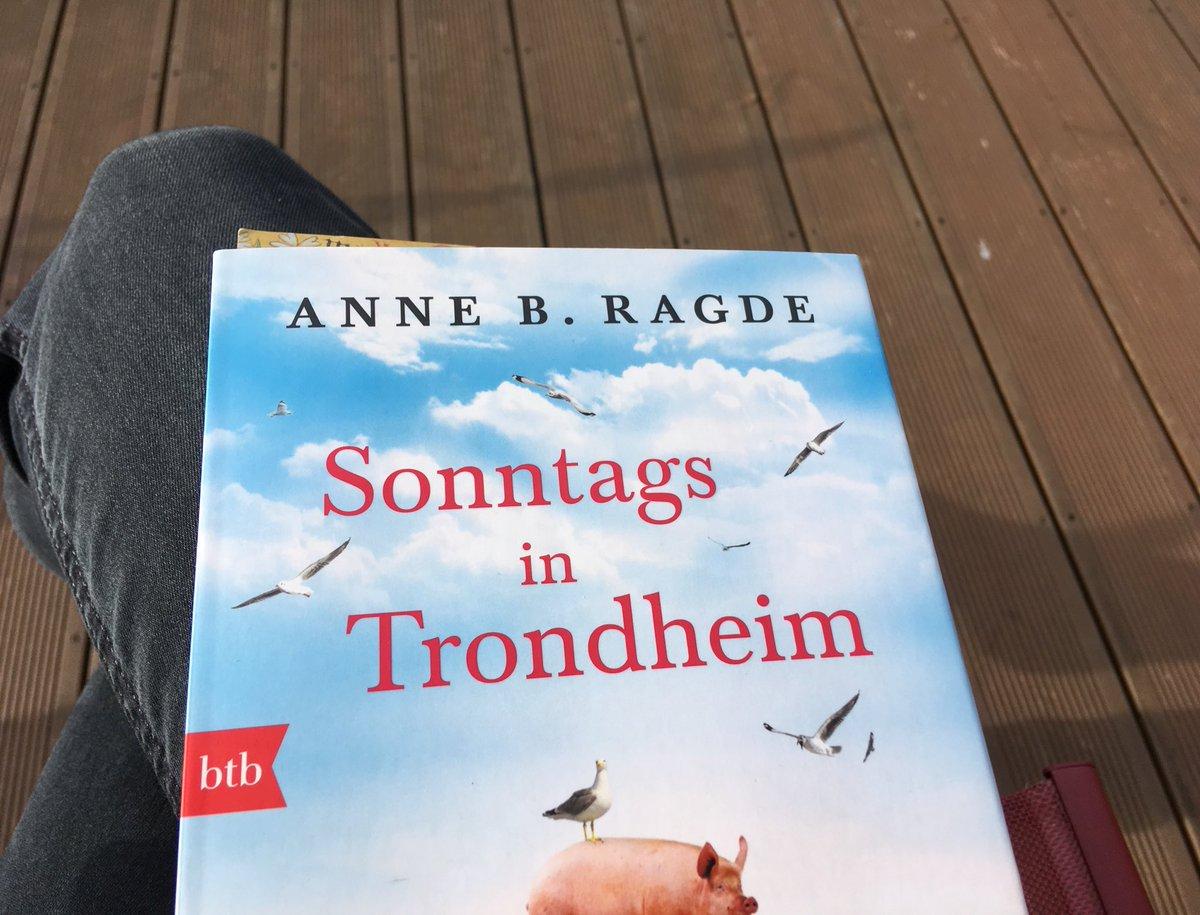Anja Kiel On Twitter Die Vogel Zwitschern Und Ich Sitze Ohne
