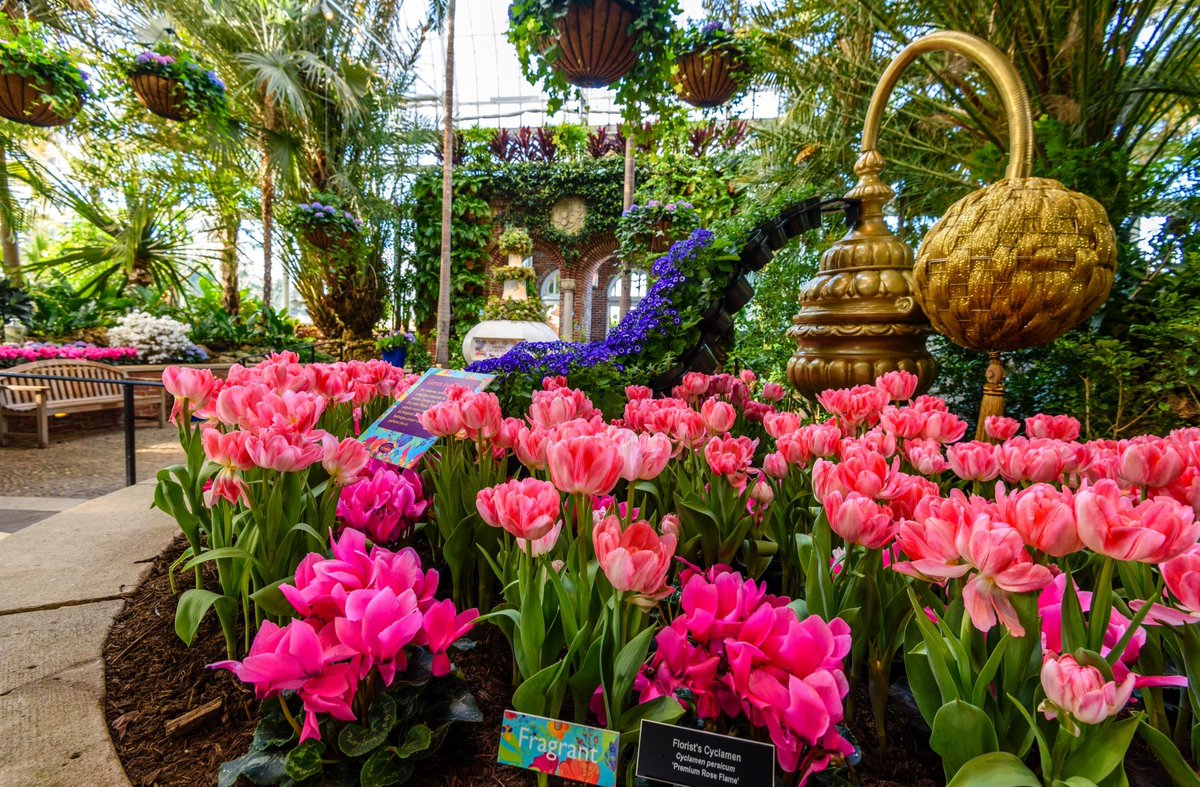 Phipps Conservatory And Botanical Gardens On Twitter Today Is The