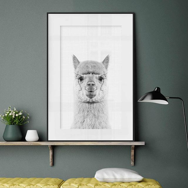 Isn't that a cute, soft, tender and sweet little smile? It will brighten each day!❤️ - Get the smile in the link in the bio. ALPACA PORTRAIT by Vivid Atelier - #artboxone #bespecial https://t.co/rCZXfRmWC5