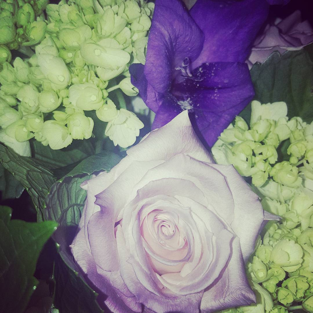 Leanne Ramnarine On Twitter These Verawanggang Flowers From
