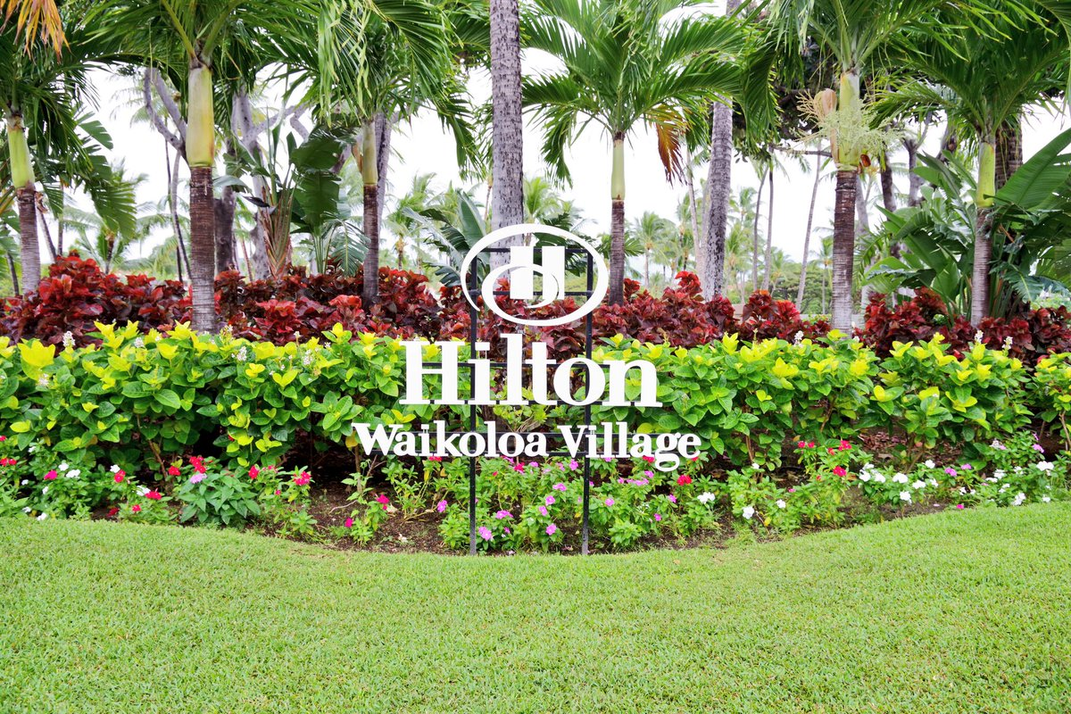 Hilton Waikoloa (@HiltonWaikoloa)   Twitter