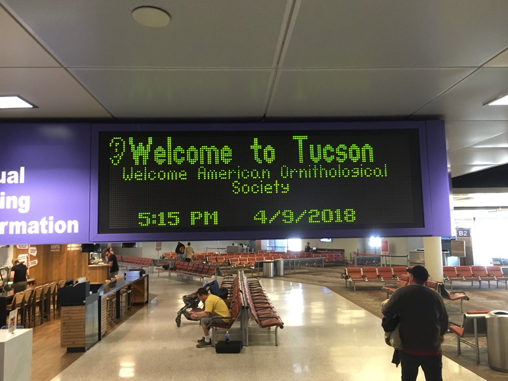 Nice welcome at the Tucson airport 🛬👋🐦 #AOS18AZ