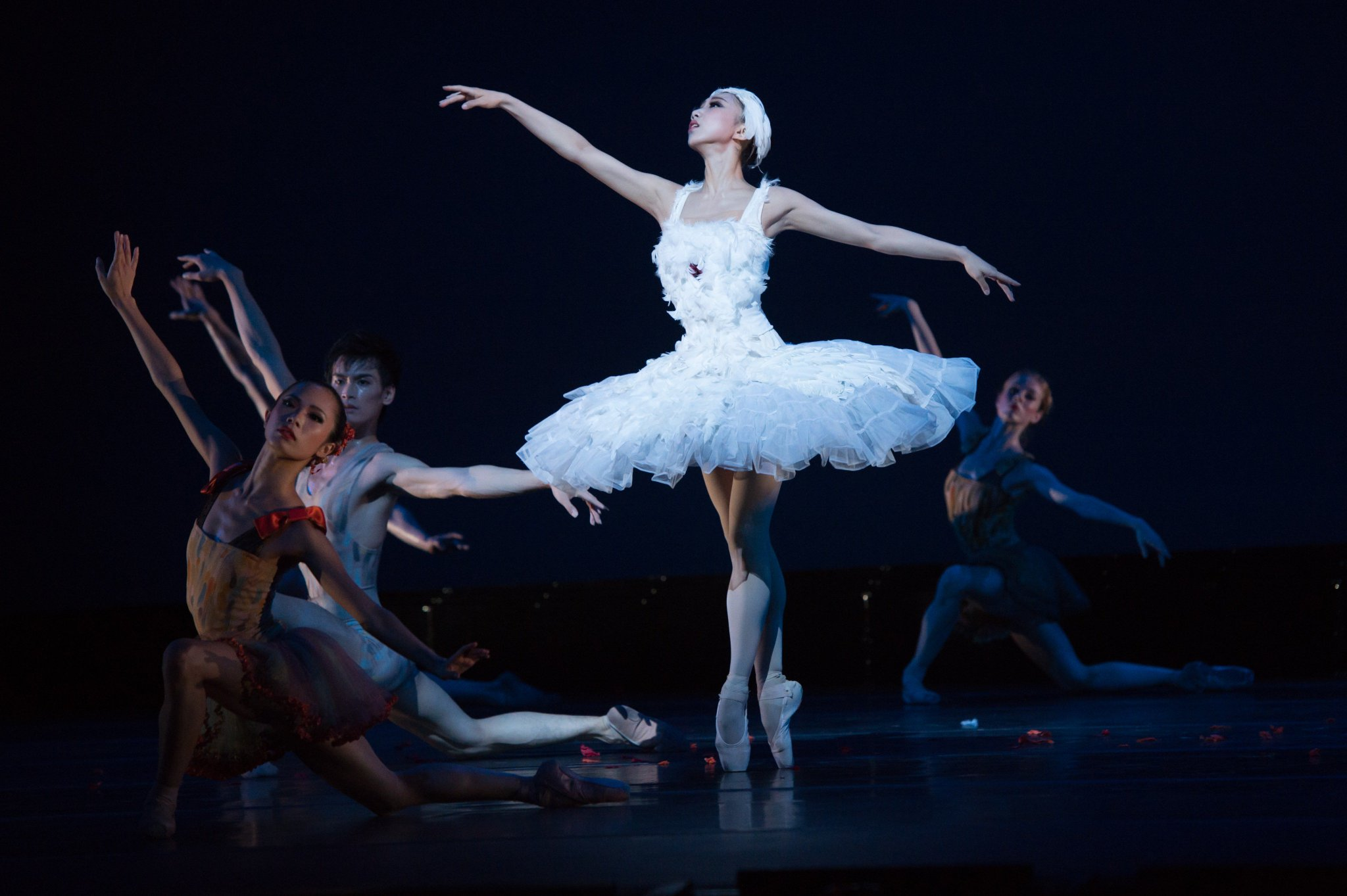 Reloaded twaddle – RT @HongKongBallet: Today's #TutuTuesday features the elegant Swan from Le Carna...