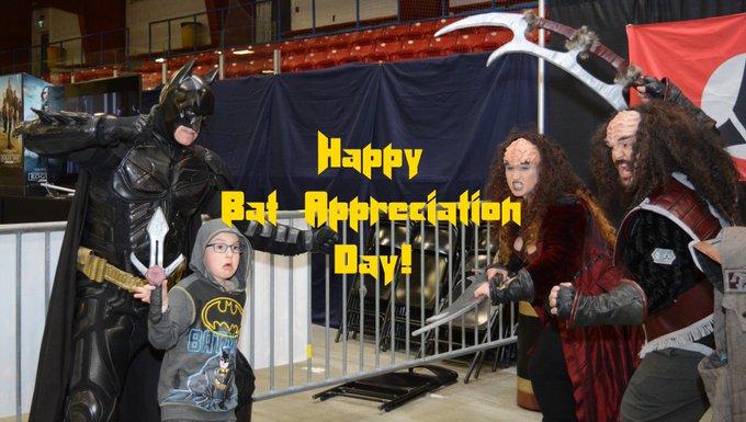 #BatAppreciationDay Photo