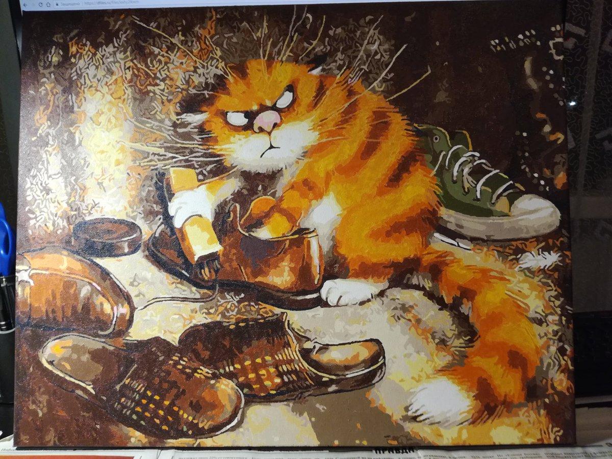 кот и тапки картинки картина по номерам изнашивается