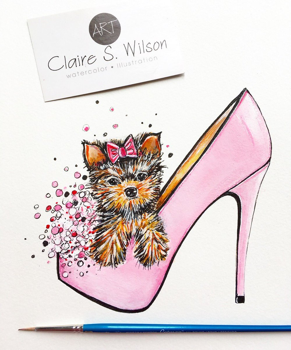 Claire S Wilson On Twitter Yorkie Loves Shoes Yorkie