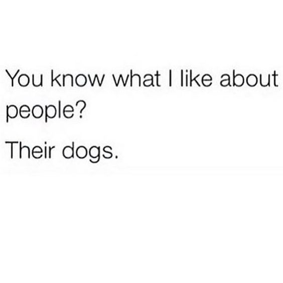 #You #know what I #like about #people ? Their #dogs  #dog #quote #quotes #QuotesForLife #quotesandsayings #quotesaboutlife<br>http://pic.twitter.com/FkuxYRccLo