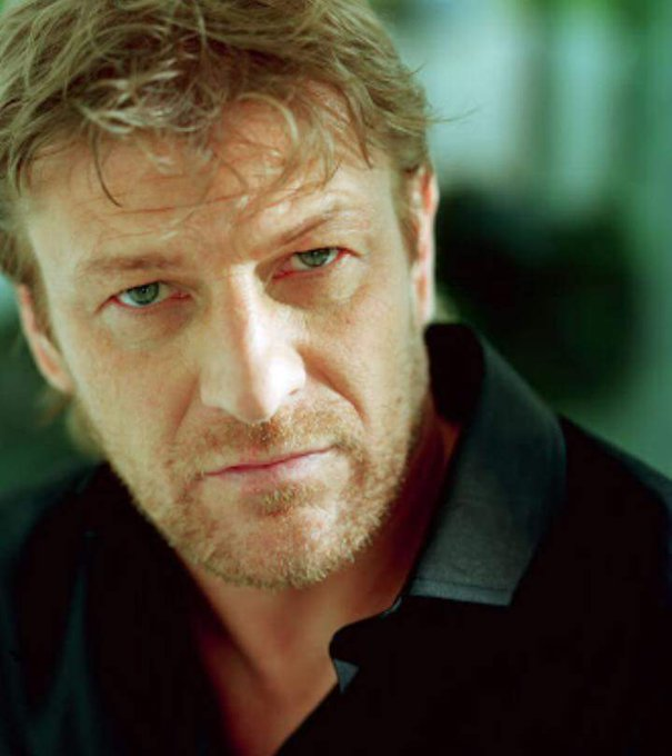 Happy birthday to Sean Bean... without whom a lot of would be duller, and less filled with  explosions.
