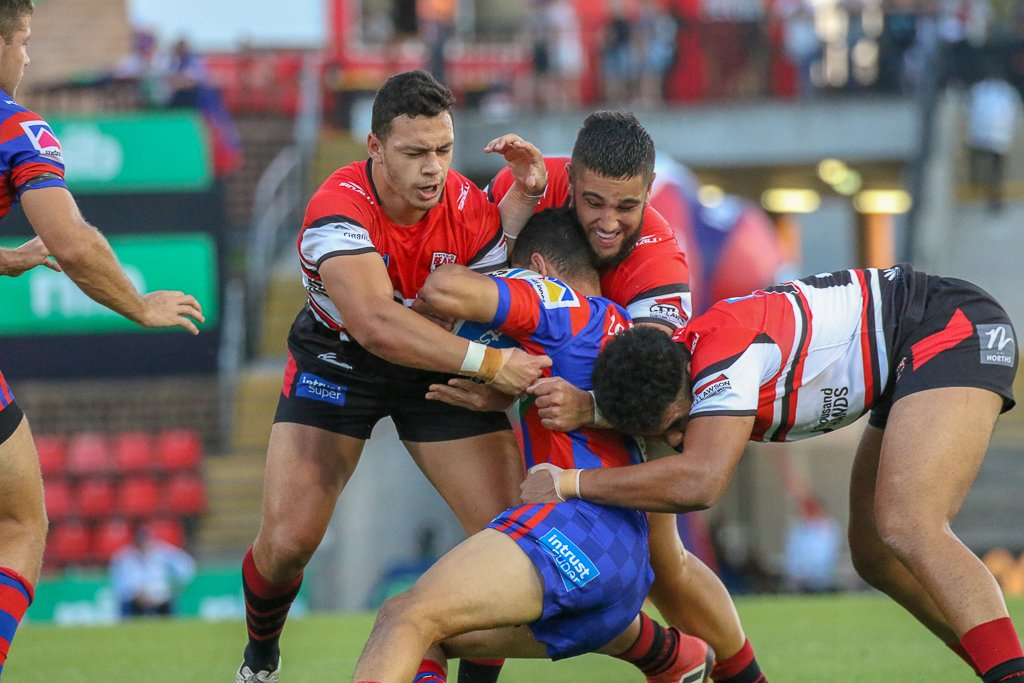 newcastle knights - 1030×687