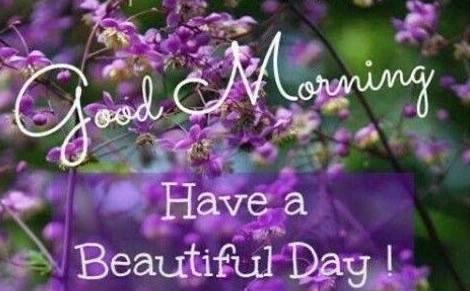 Eden Garden On Twitter Good Morning Happy Tuesday Have A