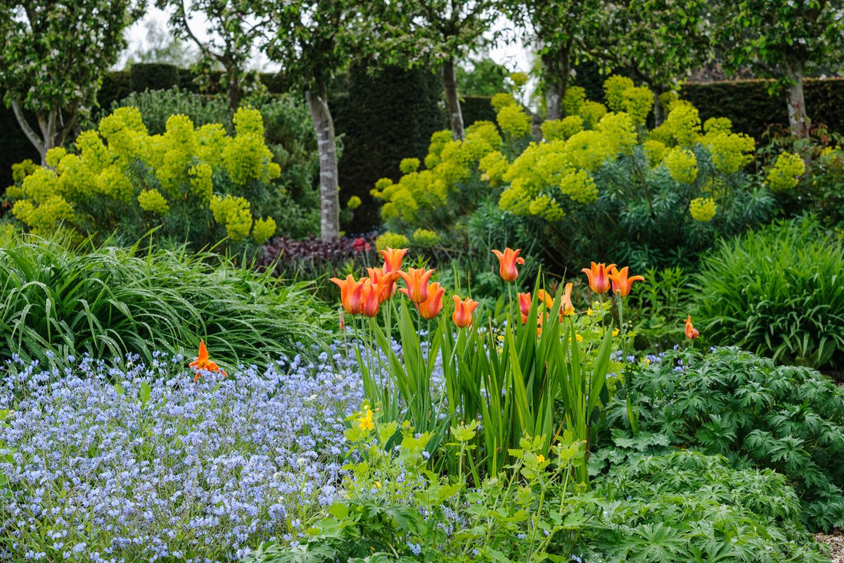 We still have 2 stalls available for exhibitors at our Spring Garden Show (20-22 Apr).  Please get in touch if you are interested 01483 405119 or sueg@loseleypark.co.uk
