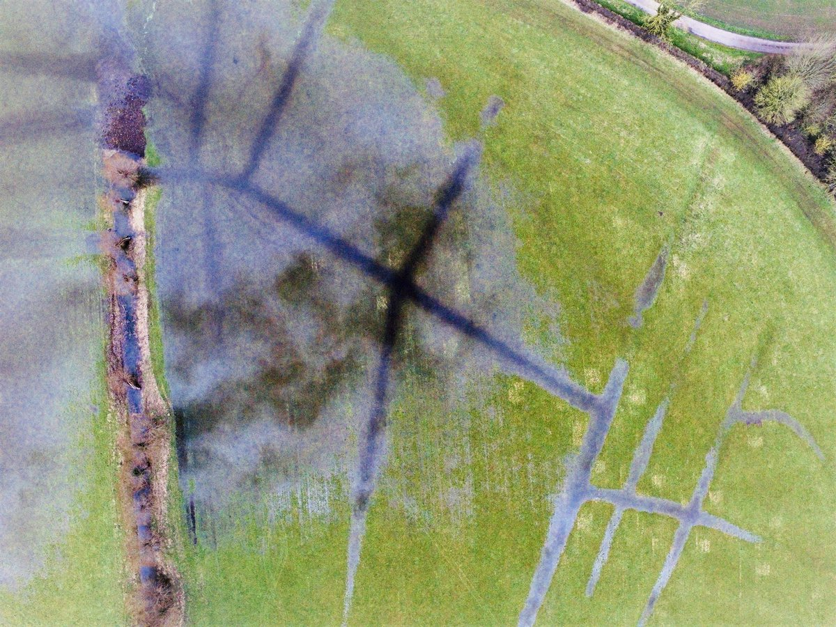 Dragonfly Drones on Twitter: