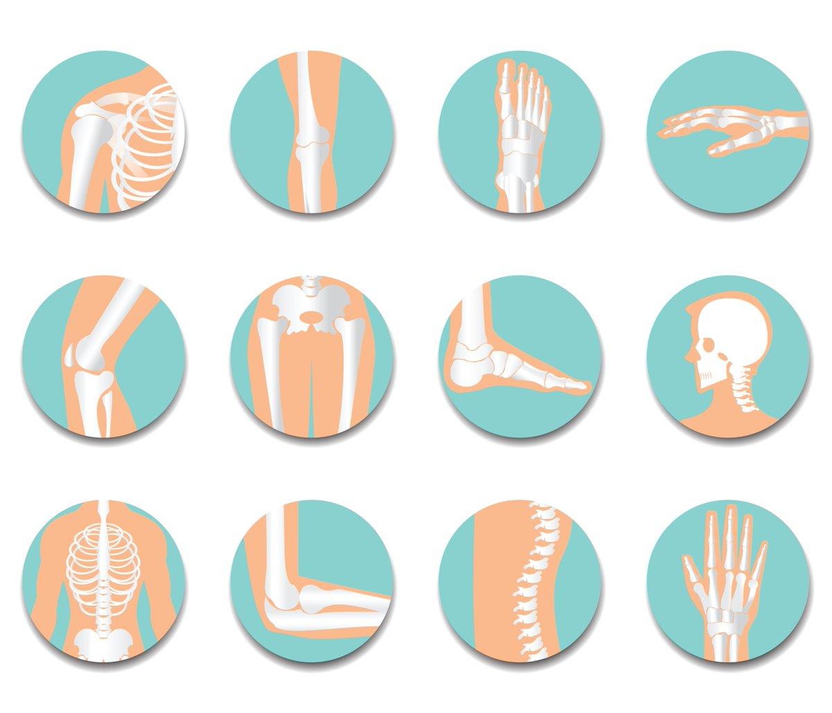 Você sabia que existe transplante de ossos?  Confira mais no #BlogDaSaúde https://t.co/Ts2sgrm0RW