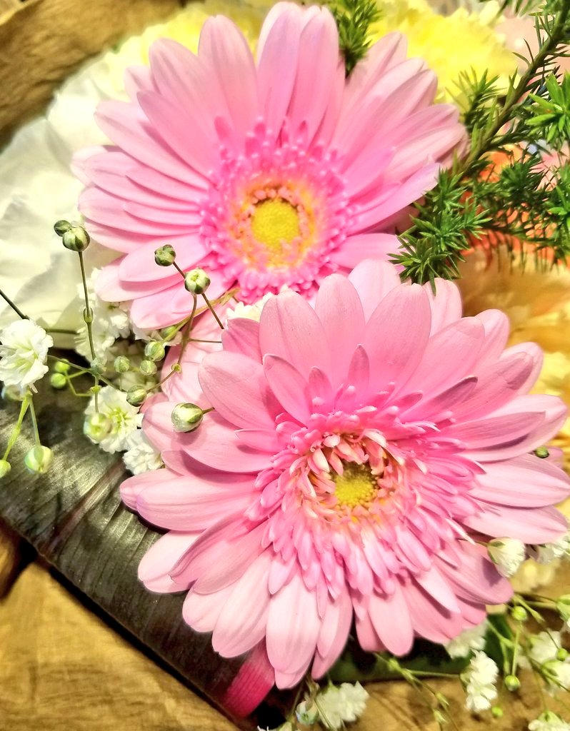 @marienassar_ Good morning dear Marie 💗💗Have a happy Thursday💗💗