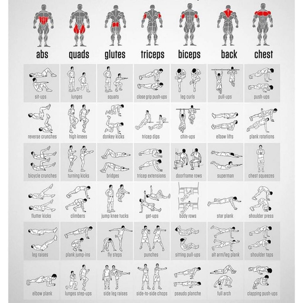 ejercicios gestation pesas linear unit casa