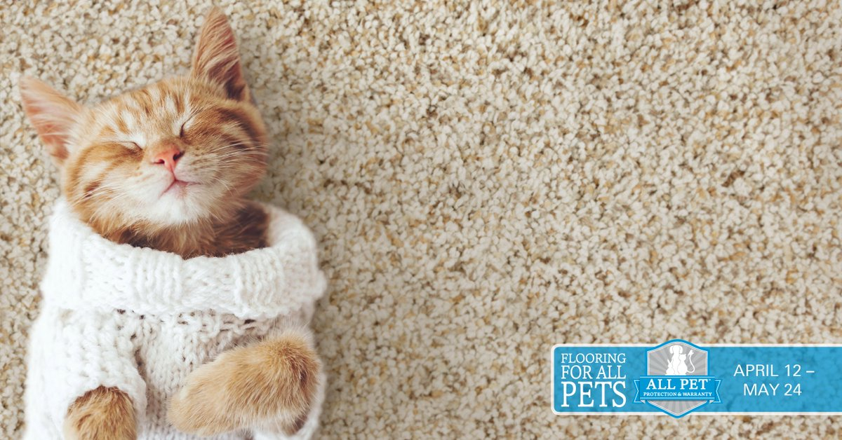Request Your Coupon Now For Up To $1,000 Off Select Mohawk Flooring Styles  With All Pet Protection And Warranty At Baltimore Floor Works Inc. ...
