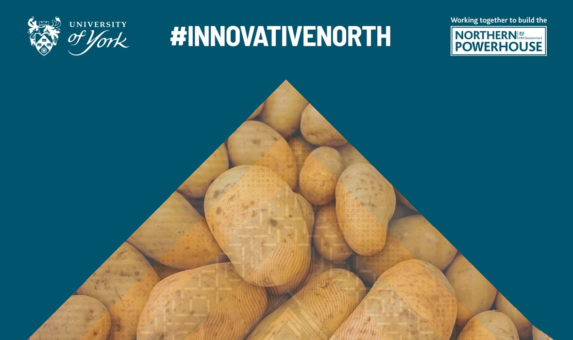 We've partnered with an international group of companies on a project investigating turning potato starch into batteries for electric vehicles. Read more:  http:// bit.ly/2qaJPTO  &nbsp;   We're sharing this #YorkResearch to celebrate @NPHinfo's Innovation Week #InnovativeNorth <br>http://pic.twitter.com/CNnIHqu9aa