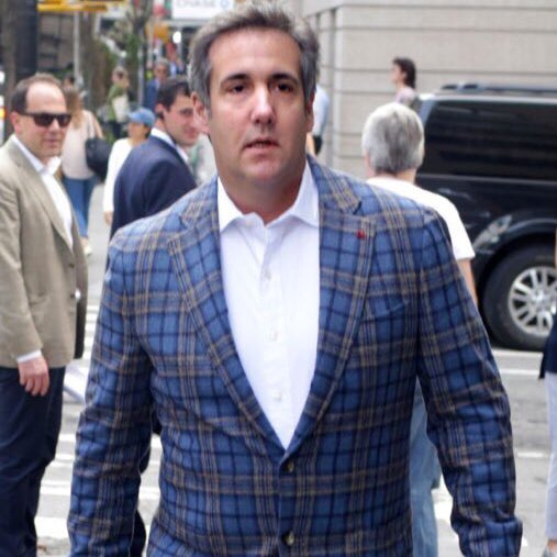 Michael Cohen wearing the jacket they give you at a fancy steakhouse when you forget to wear one.