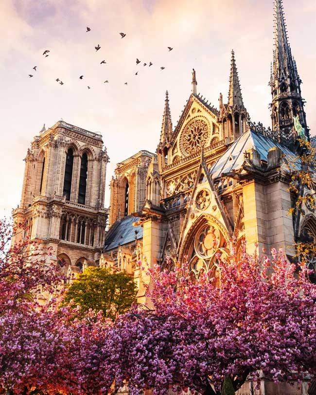 Paris je t'aime !  - Page 5 DavB-ldXcAAn4QQ