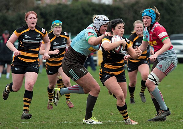 test Twitter Media - The very best of luck from all at Samurai to the @Waspsladies in the Tyrell's @Premier15s play offs against @HarlequinsWomen today at 3pm! 💪 You can do it Ladies! #SamuraiFamily https://t.co/SapywSOllW