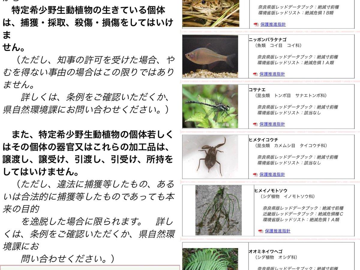 """執虫 on Twitter: """"複雑な奈良県..."""
