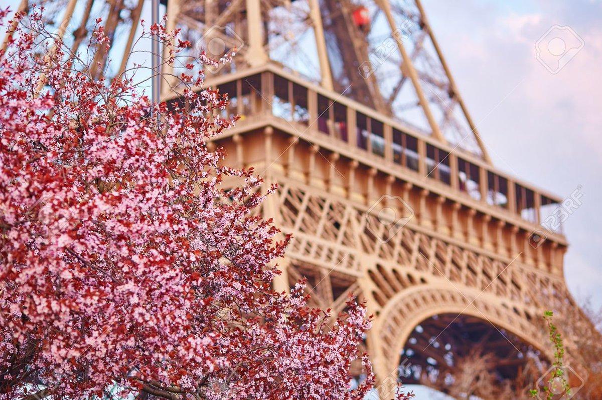 Paris je t'aime !  - Page 5 Daz9v3iX0AAzuZL