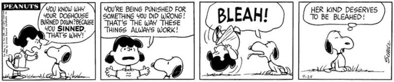 This strip also demonstrates how damn wise and smart Charles Schulz was. https://t.co/Xp1kIVDoHx