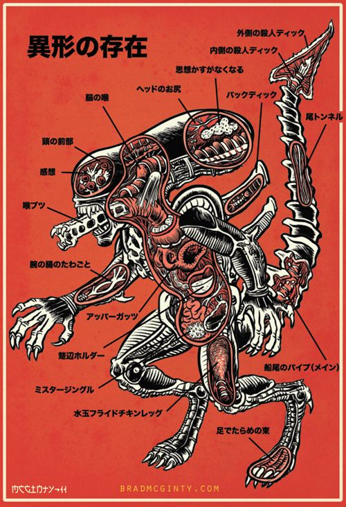 An Anatomical Guide To The Xenomorph by Brad McGinty