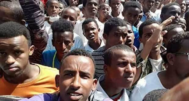 ECADF Ethiopian News on Twitter: