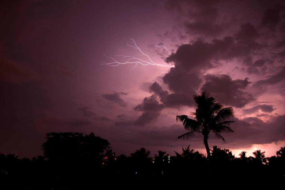 lightning strikes: Latest news, Breaking headlines and Top ...