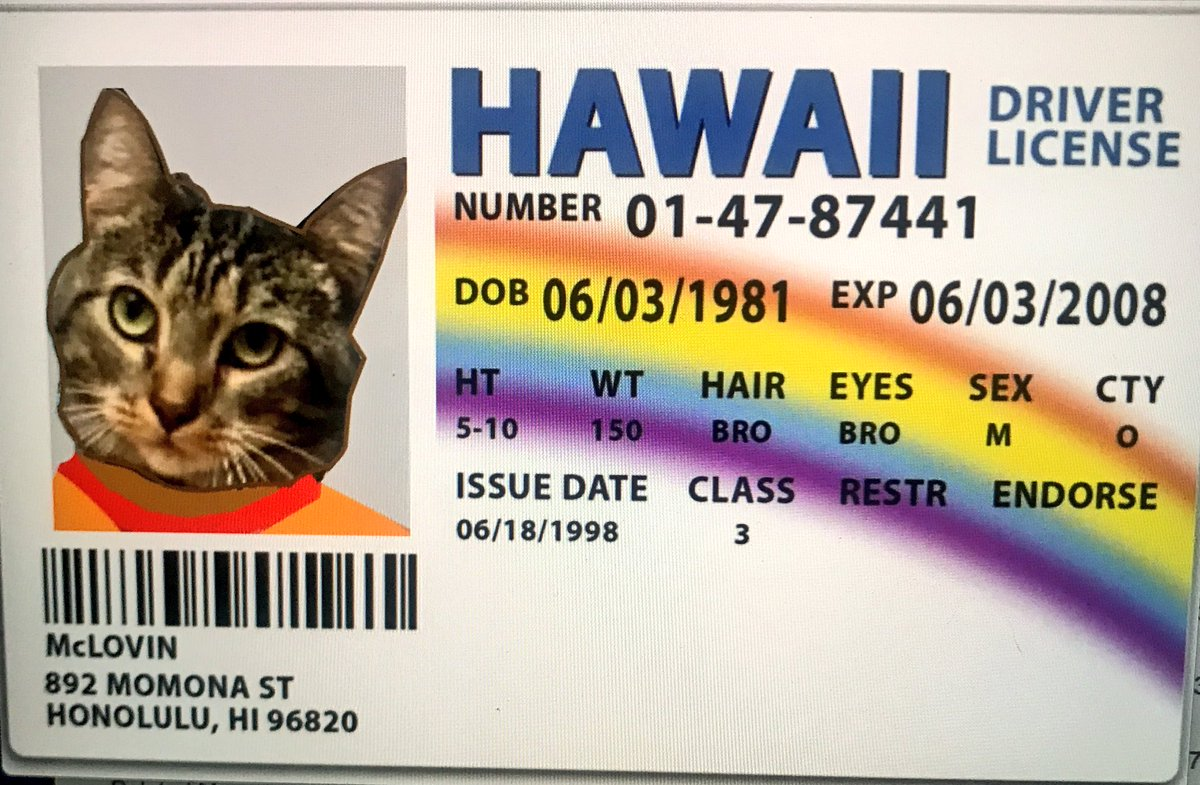 Is Paw A Organ Twitter It's Team Another Mclovin 25 The Red I Even First Relief Just firecat Hawaiian Donor