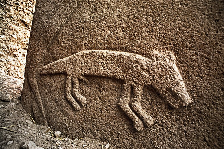 "Archaic Animals on Twitter: ""It's #MysteryMonday What animal is this? Who  is he? He's definitely a he, if you look closely. From Gobekli Tepe, in SE  Turkey, around 10,000 years ago.… https://t.co/1y8T2TB8QH"""