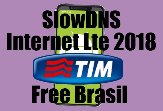 slow dns apk download old version
