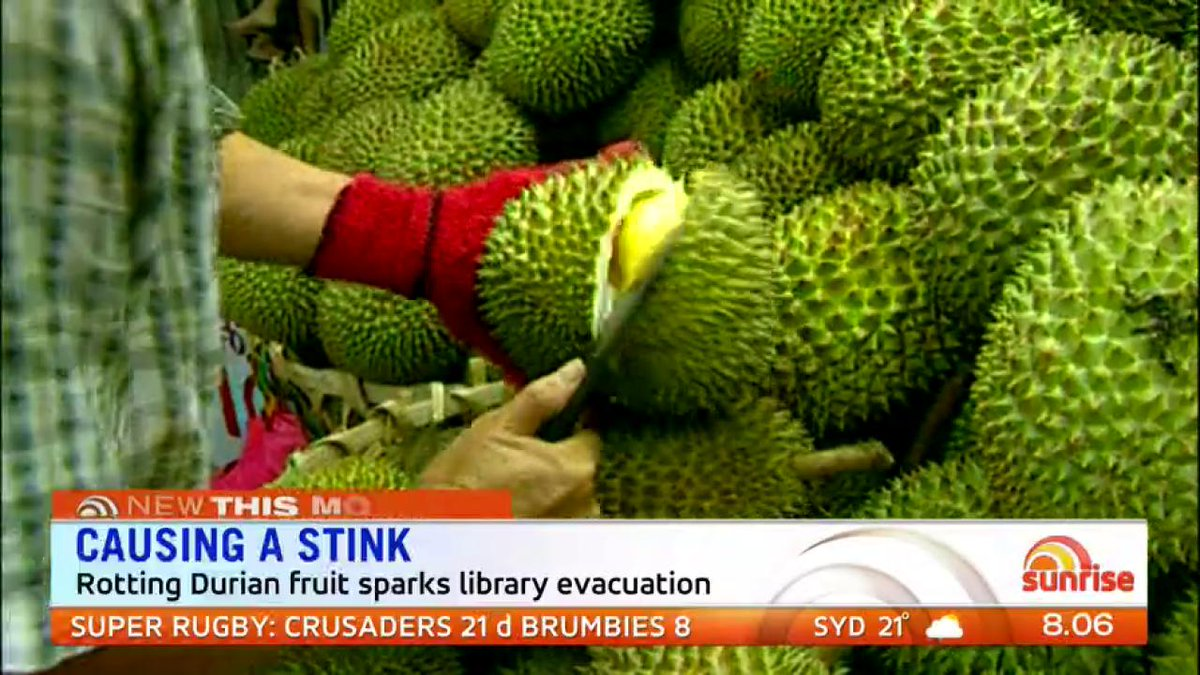 Sunrise on twitter a rotting durian fruit has sparked a library sunrise on twitter a rotting durian fruit has sparked a library evacuation at melbournes rmit university ccuart Image collections