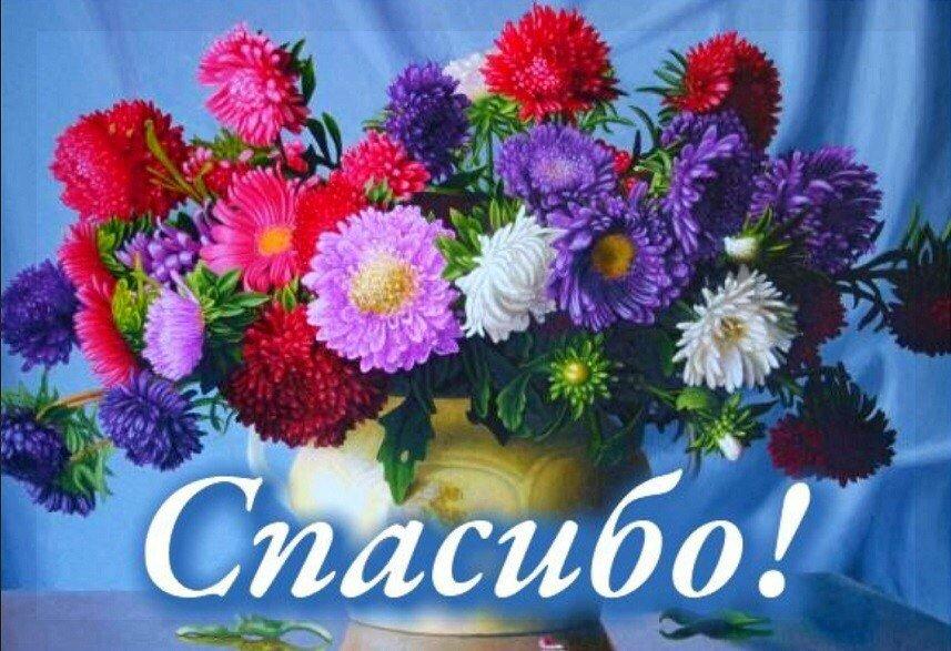 Открытки красивые букеты цветов спасибо, анастасии вербицкой