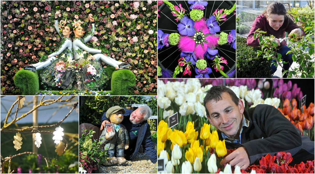 Harrogateflowershow On Twitter And Its All Overa Very Big