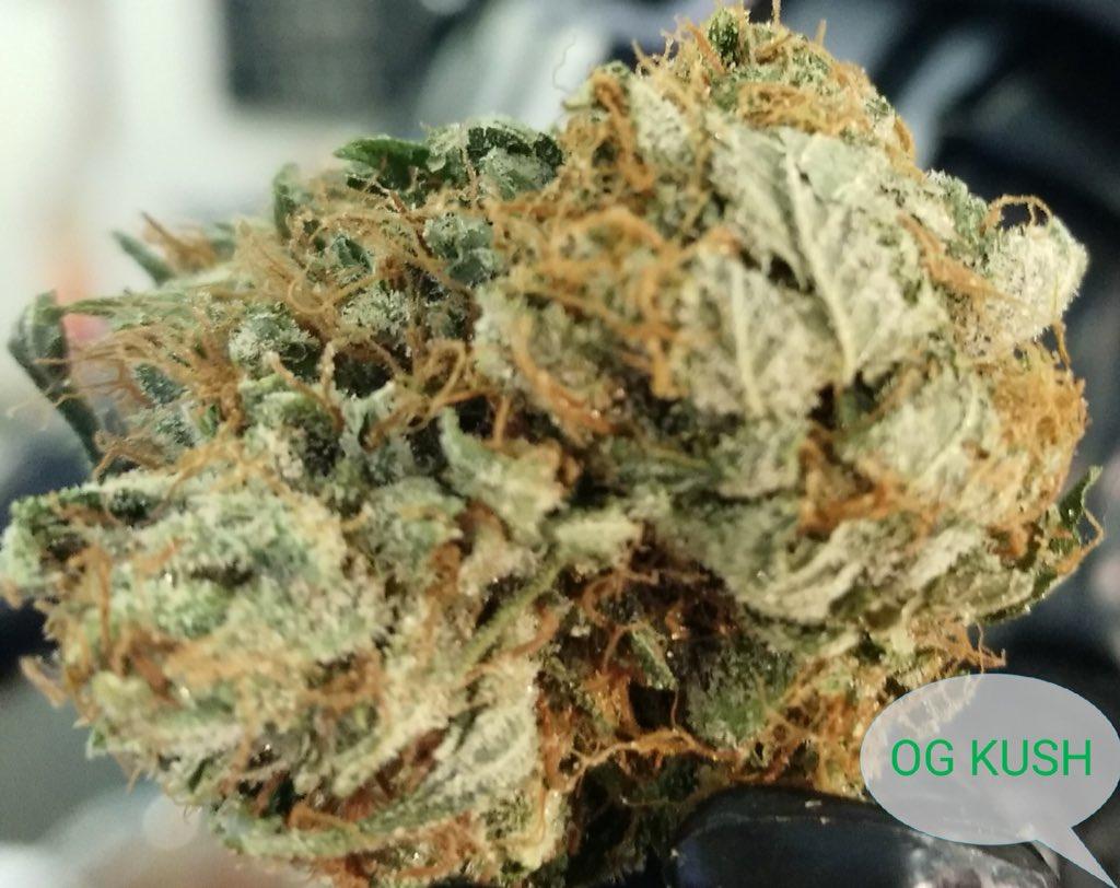 To Greener Grass Dispensary (@2GDispensary)   Twitter